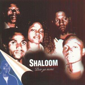 Shaloom 歌手頭像