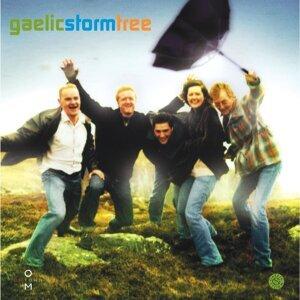 Gaelic Storm 歌手頭像