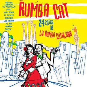 Rumbacat 歌手頭像