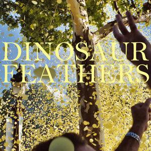 Dinosaur Feathers 歌手頭像