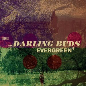The Darling Buds 歌手頭像