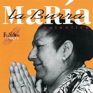 Maria la Burra 歌手頭像
