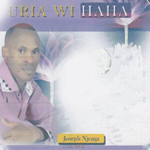 Joseph Njenga 歌手頭像