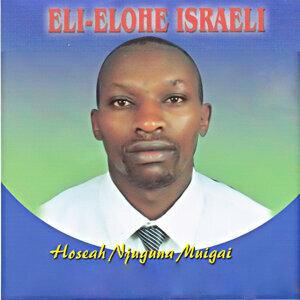 Hoseah Njunguna Muigai 歌手頭像