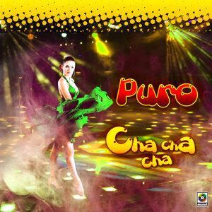 Orquesta Habana De Sosa Y Cataneo | Los Rivero 歌手頭像