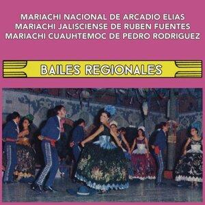 Mariachi Nacional de Arcadio Elías, Mariachi Jalisciense de Rubén Fuentes y Mariachi Cuauhtémoc de Pedro Rodríguez 歌手頭像