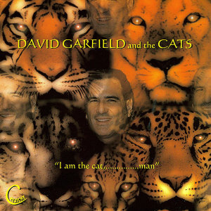 David Garfield and the Cats 歌手頭像