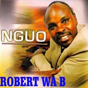 Robert Wa B 歌手頭像