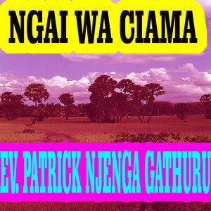 Ev. Patrick Njenga Gathuru 歌手頭像