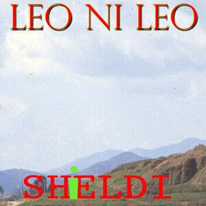 Shieldi 歌手頭像