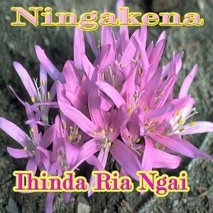 Ihinda Ria Ngai 歌手頭像