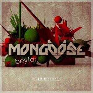 Mongoose 歌手頭像