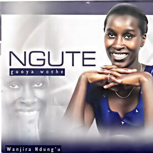 Wanjira Ndung'u 歌手頭像