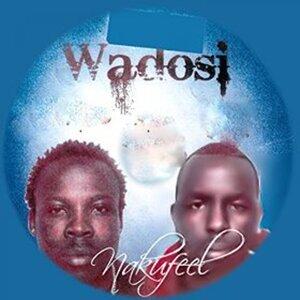 Wadosi 歌手頭像