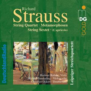 Leipziger Streichquartett, Hartmut Rohde, Michael Sanderling, Christian Ockert 歌手頭像