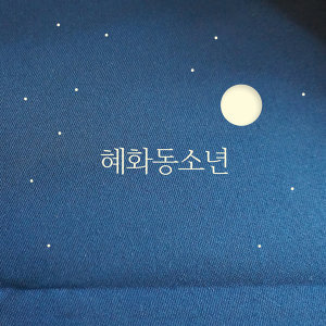 Hyehwadong Boy (혜화동소년)