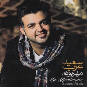 Saeed Arab