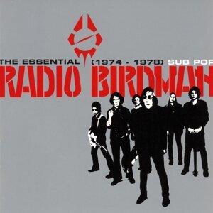 Radio Birdman 歌手頭像