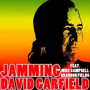 David Garfield 歌手頭像