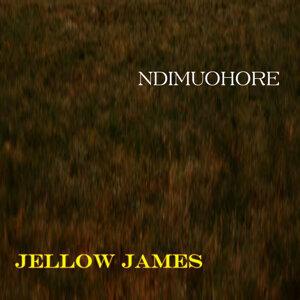 Jellow James 歌手頭像