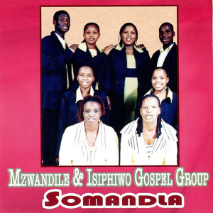 Mzwandile & Isiphiwo Gospel Group 歌手頭像