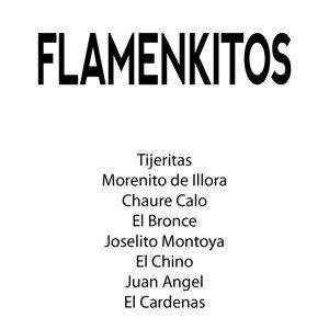 Flamenkitos 歌手頭像