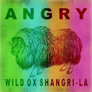 Angry 歌手頭像
