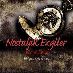 Nilgün Arman 歌手頭像