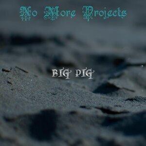 Big Pig 歌手頭像