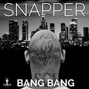 Snapper 歌手頭像