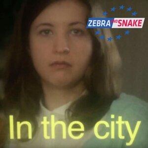 Zebra and Snake 歌手頭像