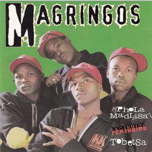 Magringos 歌手頭像