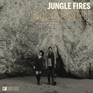 Jungle Fires 歌手頭像