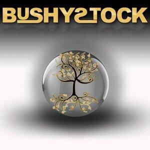 BushyStock 歌手頭像