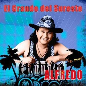 """Alfredo """"El Pulpo"""" Y Sus Teclados 歌手頭像"""