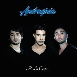 Androginia 歌手頭像