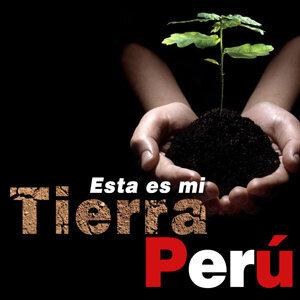 La Selección Peruana de Voces 歌手頭像