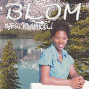 Blom 歌手頭像