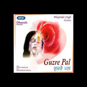 Shilpi Mathur 歌手頭像