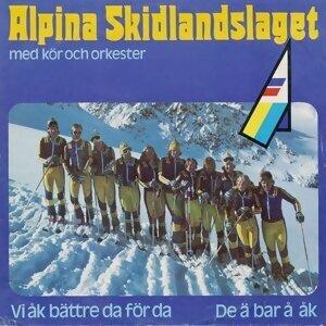 DJ Perrra feat. Alpina Skidlandslaget -76 歌手頭像