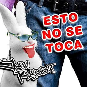 Javi Rabbit アーティスト写真