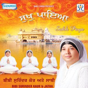 Bibi Surinder Kaur,Havinder Kaur 歌手頭像
