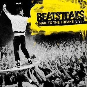 Beatsteaks 歌手頭像