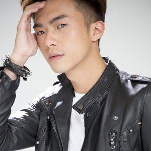 陳盛宇 歌手頭像
