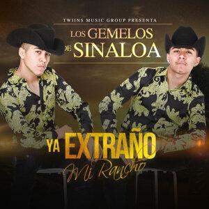 Los Gemelos De Sinaloa 歌手頭像