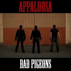 Bad Pigeons 歌手頭像