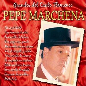 Pepe Marchena 歌手頭像
