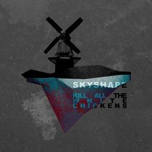 Skyshape 歌手頭像