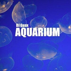 DJ Guax