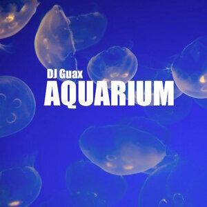 DJ Guax 歌手頭像